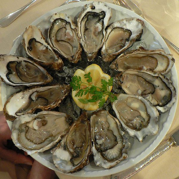 oysters-on-a-plate-by-wikimedia-user-claude-covo-farchi-12-126-12